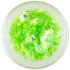 Decoraţiuni pentru unghii, de culoare verde - fulgi